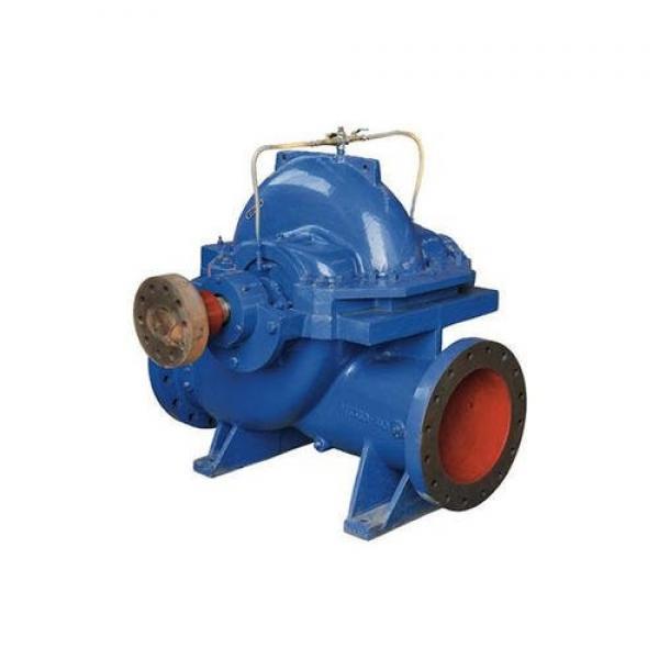 Vickers V2020 1F9B7B 1AA 30  Vane Pump #1 image